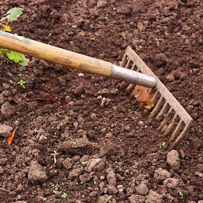 Jardinage Torreilles 66
